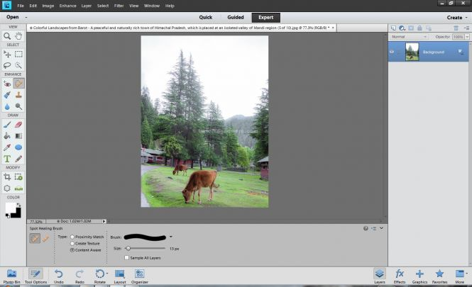 Adobe Photoshop Elements 11 interface