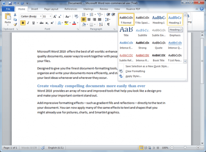 MS Office Word 2010