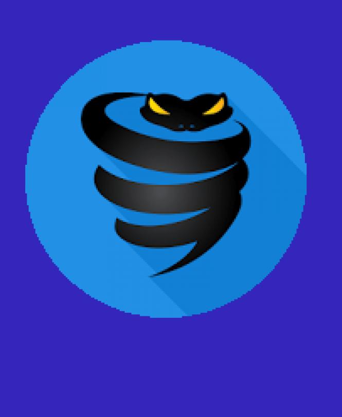 VyprVPN - download in one click  Virus free