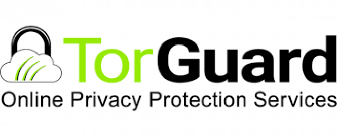 TorGuard VPN - download in one click  Virus free
